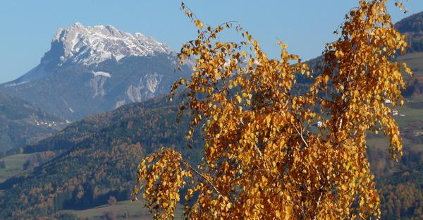 2011 sah der Herbst prächtig aus. Wie ich fühle, wird es 2012 nicht anders sein - Bild: korsakoff