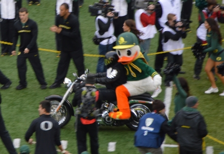 Das Maskottchen der Oregon Duck - Bild: Maximilian Länge